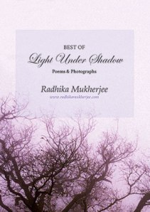 Cover_Best of Light Under Shadow