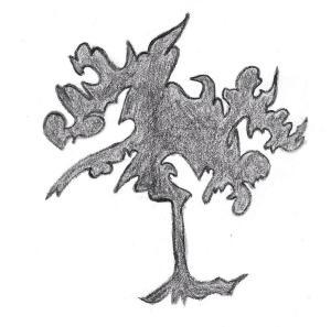 The Wonder Tree