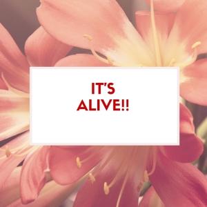 IT'S ALIVE!!-2